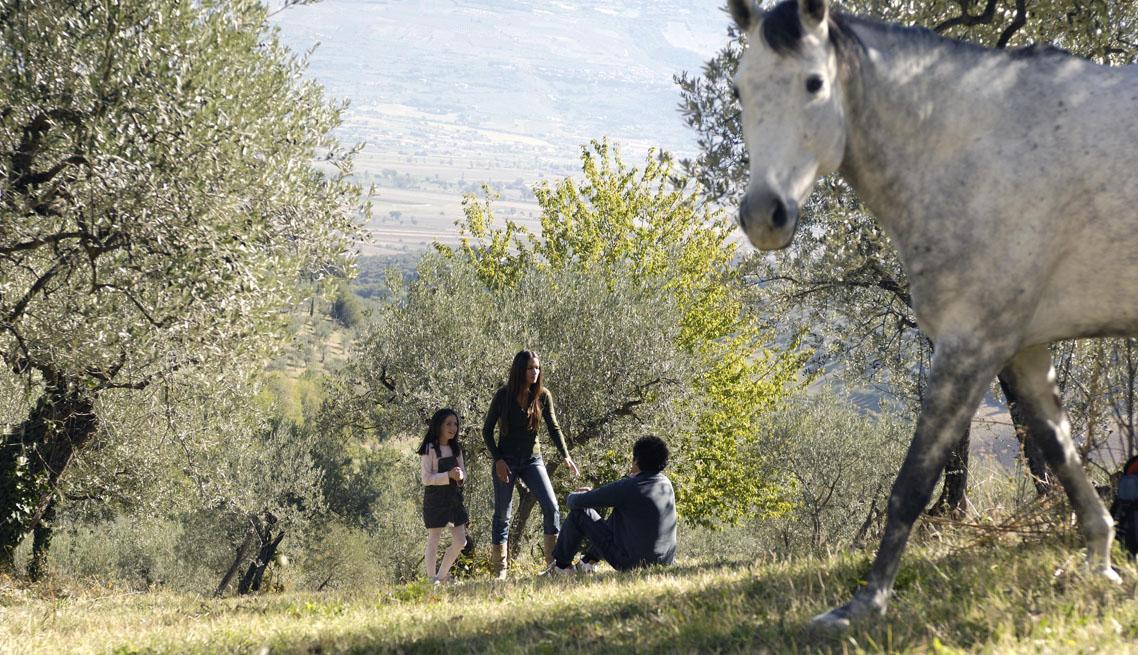 Costantino - Grand Tour Calabria